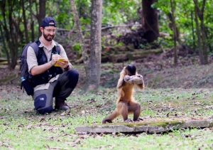 Researcher Tiago Falótico observing a capuchin monkey cracking nuts